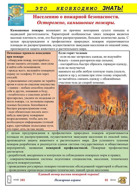 Камышовый пожар_page-0001